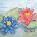 Pamela  Meredith - Water   Lillies