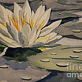 Bill Dinkins - Water Lilly