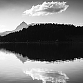 Matthias Hauser - Water reflection black...