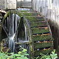 Dwight Cook - Water Wheel