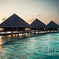 Hannes Cmarits - Waterbungalows At Sunset