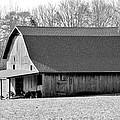Cynthia Guinn - Weathered Barn