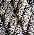 Vishwanath Bhat - Weathered rope closeup