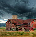 Lori Deiter - Weathering the Storm