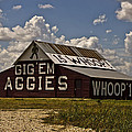 Matthew Miller - Western-Aggie Barn-Color
