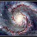 Rose Santuci-Sofranko - Whirlpool Galaxy NASA