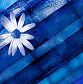 Ann Powell - White Daisy on Blue Two