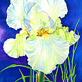 Barbara Jewell - White Iris