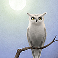 April Moen - White Owl