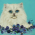 Nadine and Bob Johnston - White Persian in Pansy...