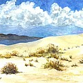 Carol Wisniewski - White Sands New Mexico U...