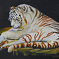 Phyllis Beiser - White Tiger Sleeping