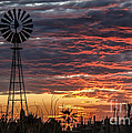 Robert Bales - Windmill And The Sunset