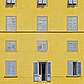 David Letts - Windows of Florence...
