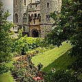 Stephen Stookey - Windsor Castle Gardens