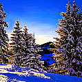 Bob and Nadine Johnston - Winter Sunrise in Sierra...
