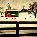 Pamela Phelps - Winter Morals at the Farm