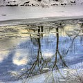 John  Greaves - Winter Reflections