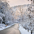 Elena Elisseeva - Winter road in snowy...