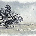 Julie Palencia - Winter Scene Greeting...