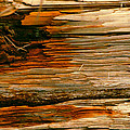 Michael Durst - Wooden Abstract