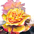Greta Corens - Yellow and pink roses