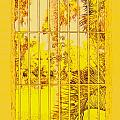 Kathy Barney - Yellow Atalaya Window