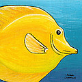 Adam Johnson - Yellow Tang