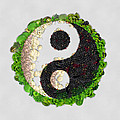 Eti Reid - Yin Yang vegetables art...