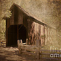 Pam  Holdsworth - Yosemite Covered Bridge