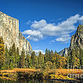 Dianne Phelps - Yosemite in Autumn
