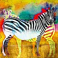 Barbara Chichester - Zebra Colors of Africa