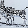 Cheryl Poland - Zebra Play