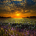 Phil Koch - A New Day