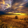 Phil Koch - Wings and Prayers