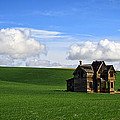 Steve McKinzie - Abandoned House on Green...
