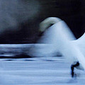 Colette Hera  Guggenheim - Abstract Swan Dance