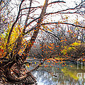 Sharlotte Hughes - Autumn on the Neosho...