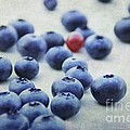 Tanja Riedel - Blueberries