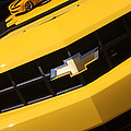 Gary Gingrich Galleries - Bumble Bee Grill-7921