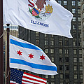 Ann Horn - Chicago Flags