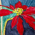 Charlotte Hickcox - Christmas Flower