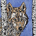 Connie Valasco - Clever Wolf