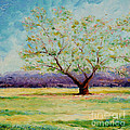 Cindy Roesinger - Dapples Apple Tree II
