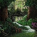 Michael Frank - Forest Brook