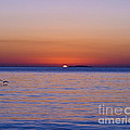 Al Powell Photography USA - Fort Sumter Sunrise