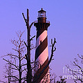 Al Powell Photography USA - Hatteras Light and Tree