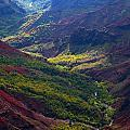 Mike Reid - Morning Waimea Canyon