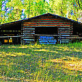 Lenore Senior and Dawn Senior-Trask - Old Barn with Wings