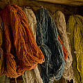 Wilma  Birdwell - Organic Yarn and Natural...